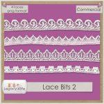 Lace Bits 2